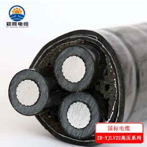 新郑铝芯高压电缆