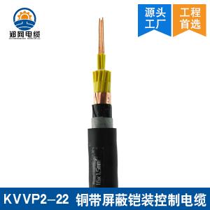KVVP2-22钢带屏蔽铠装控制电缆