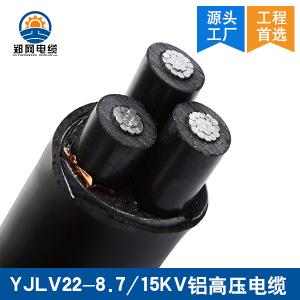 新郑YJLV22铝高压电缆